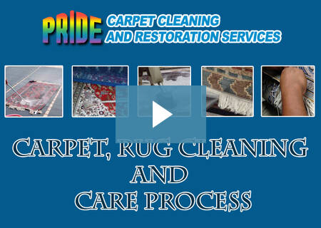 Our Carpet Care Video