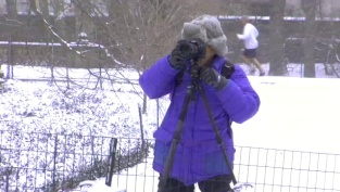 Induro on Location: Jim Zuckerman in Central Park