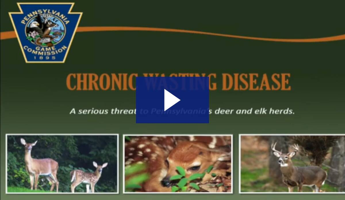 Chronic Wasting Disease Forum