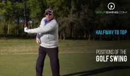 Positions of the Golf Swing: Halfway to the Top