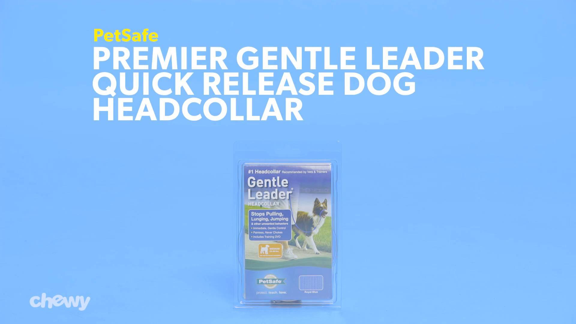 Large Nylon Premier NEW DOG Gentle Leader ROYAL BLUE