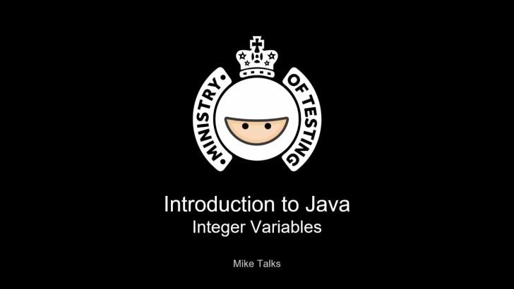 Integer Variables