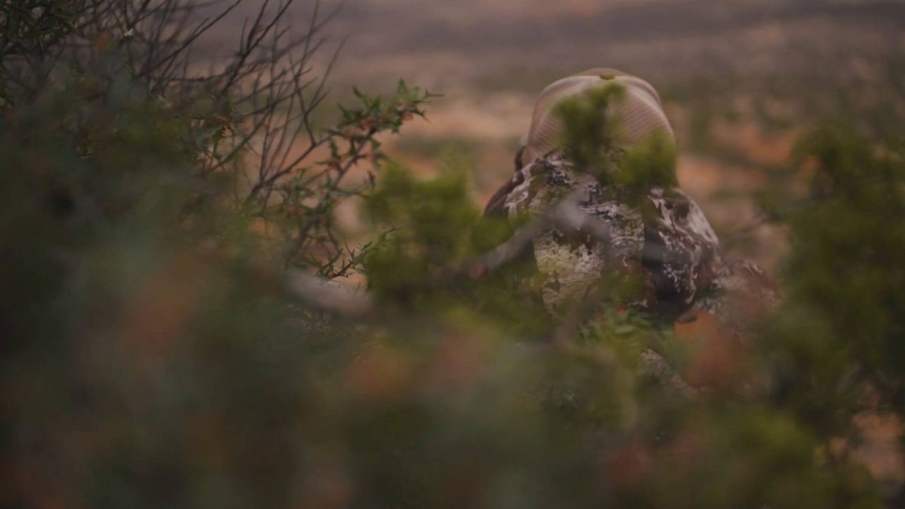 Tim Brandt - Why you need good glass when hunting Aoudad