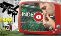 UNDERGROW TV #182 Cómo plantar en exterior; Genéticas de Brasil, Medical Weed Chile, Análisis del cannabis