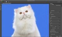 Como remover o fundo de uma imagem com o recurso Selecionar e Mascarar