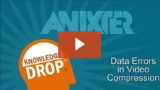 Data Errors in Video Compression