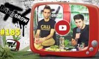 UNDERGROW TV #185 Dudas sobre cultivo y cocina, Lasaña cannábica, Invertir en marihuana