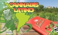 Un viaje fantástico, el libro sobre la historia del cannabis en Chile y en el mundo