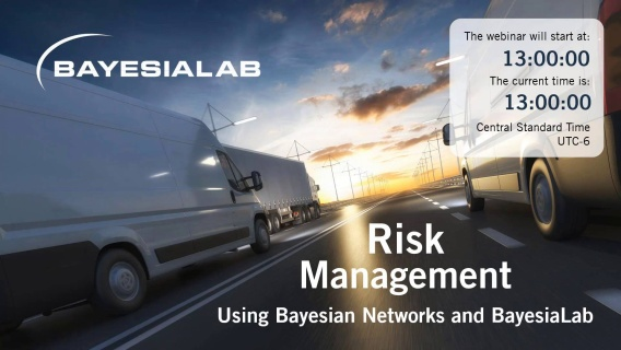 Bayesian Networks for Risk Management without Data