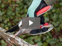 Video for Ratchet Pruner