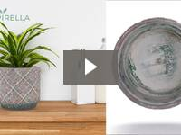 Video for Modern Cement Indoor Flower Pot
