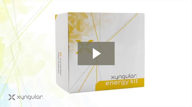 Xyngular Energy Kit