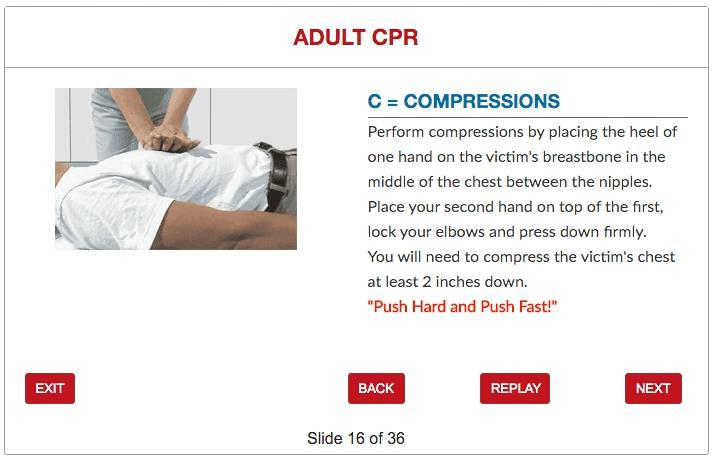 Cpraedfirst Aid Certification Program Issa Online