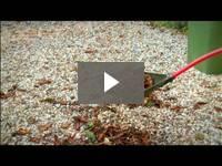 Video for 3-in-1 Shovel & Rake Sifter