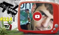 UNDERGROW TV #214 Top 5 variedades Haze, Rosin, Cuándo regar, Noticias cannábicas