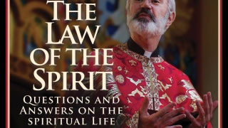 What Are We Doing in the Divine Liturgy? width=