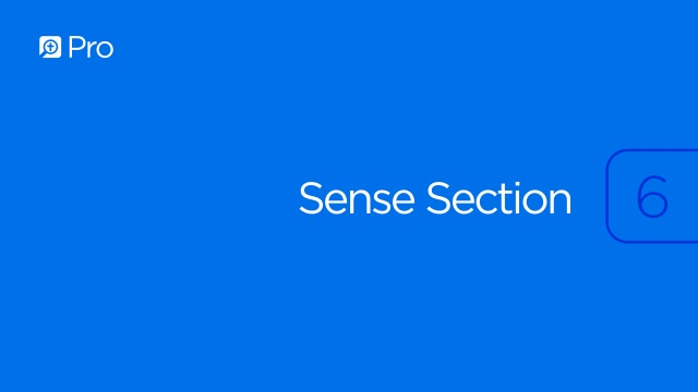 Sense Section