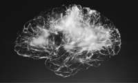 Localisation in the Brain