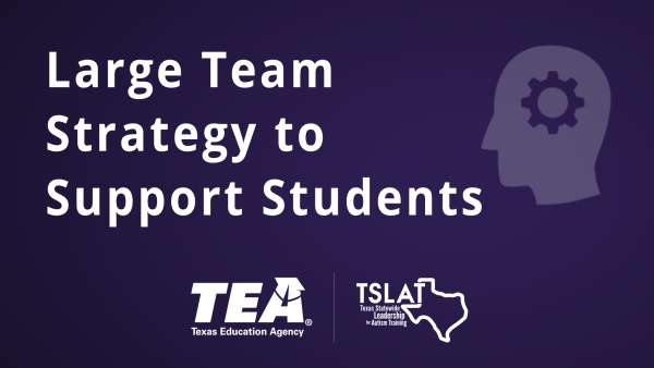 Large Team Strategy to Support Students
