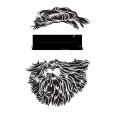 BeardedWandererMedia
