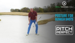 Pitch Perfect - Bunkers: Posture