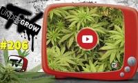 UNDERGROW TV #206, cultivo LED crecimiento, Ensalada Caprese, Top 5 Breeder seeds, Revista Cáñamo