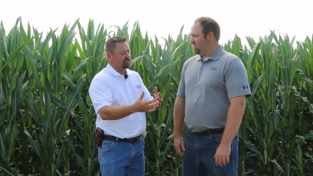 Agronomic Insights Episode 4